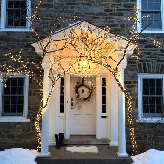 Sullivan-Owen-Holiday-Decor-Lights-Trees-House-Philadelphia