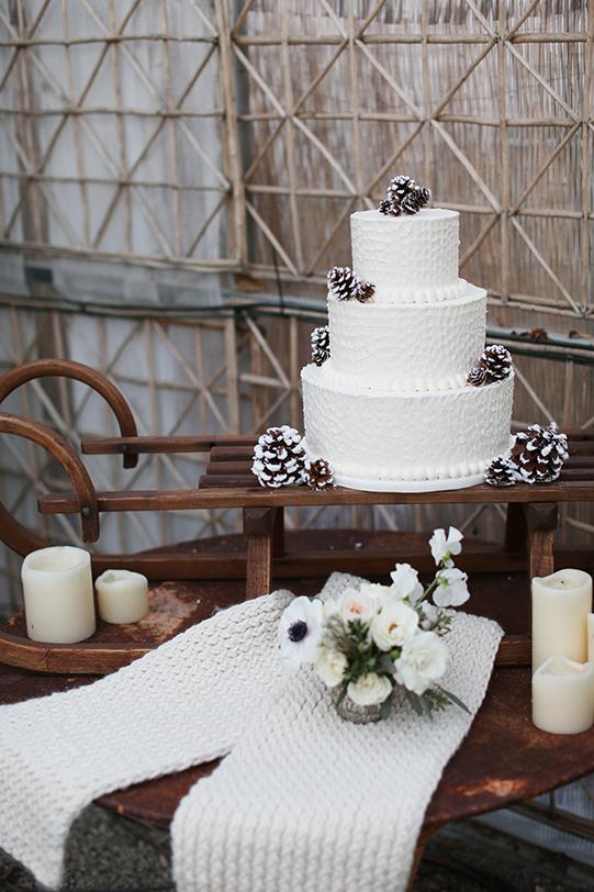 Sullivan-Owen-Alison-Conklin-Terrain-Winter-Wedding-Tartes-Cake-Sweater-Sled-Stand