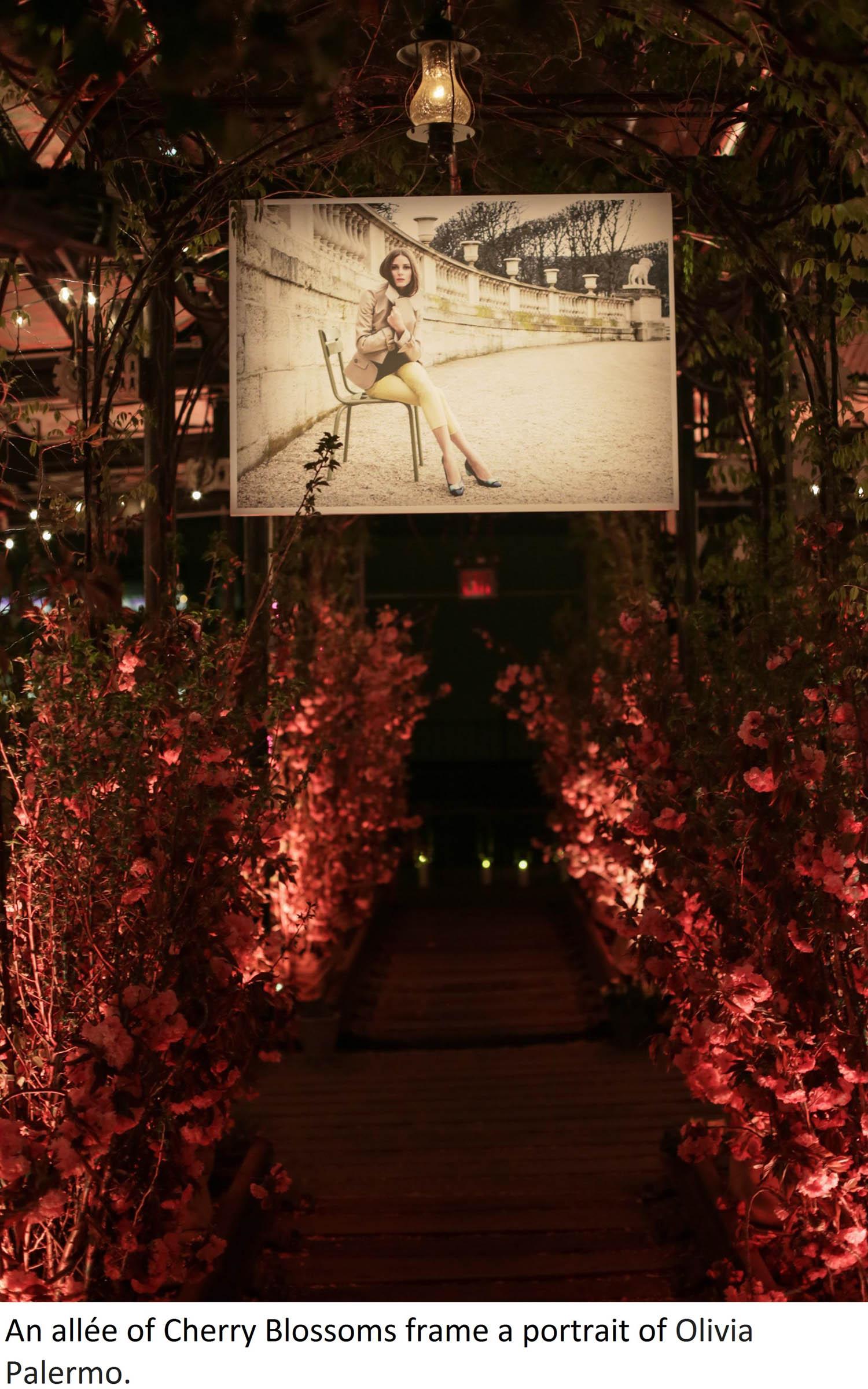 Flower Walkway - edit 3.jpg