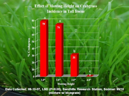 """This chart shows the importance of cutting grass at a 3"""" height"""