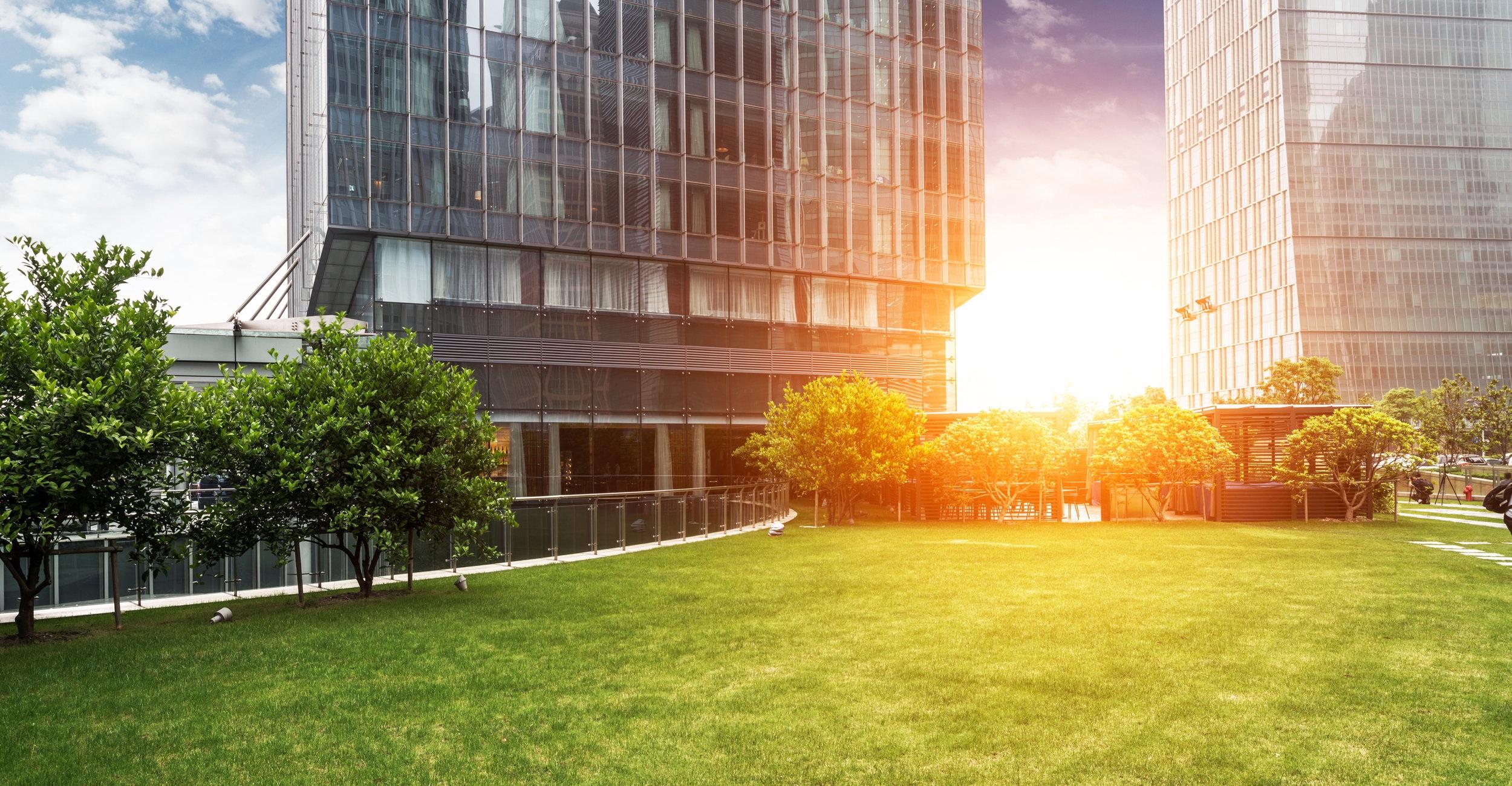 Commercial Landscape Management -