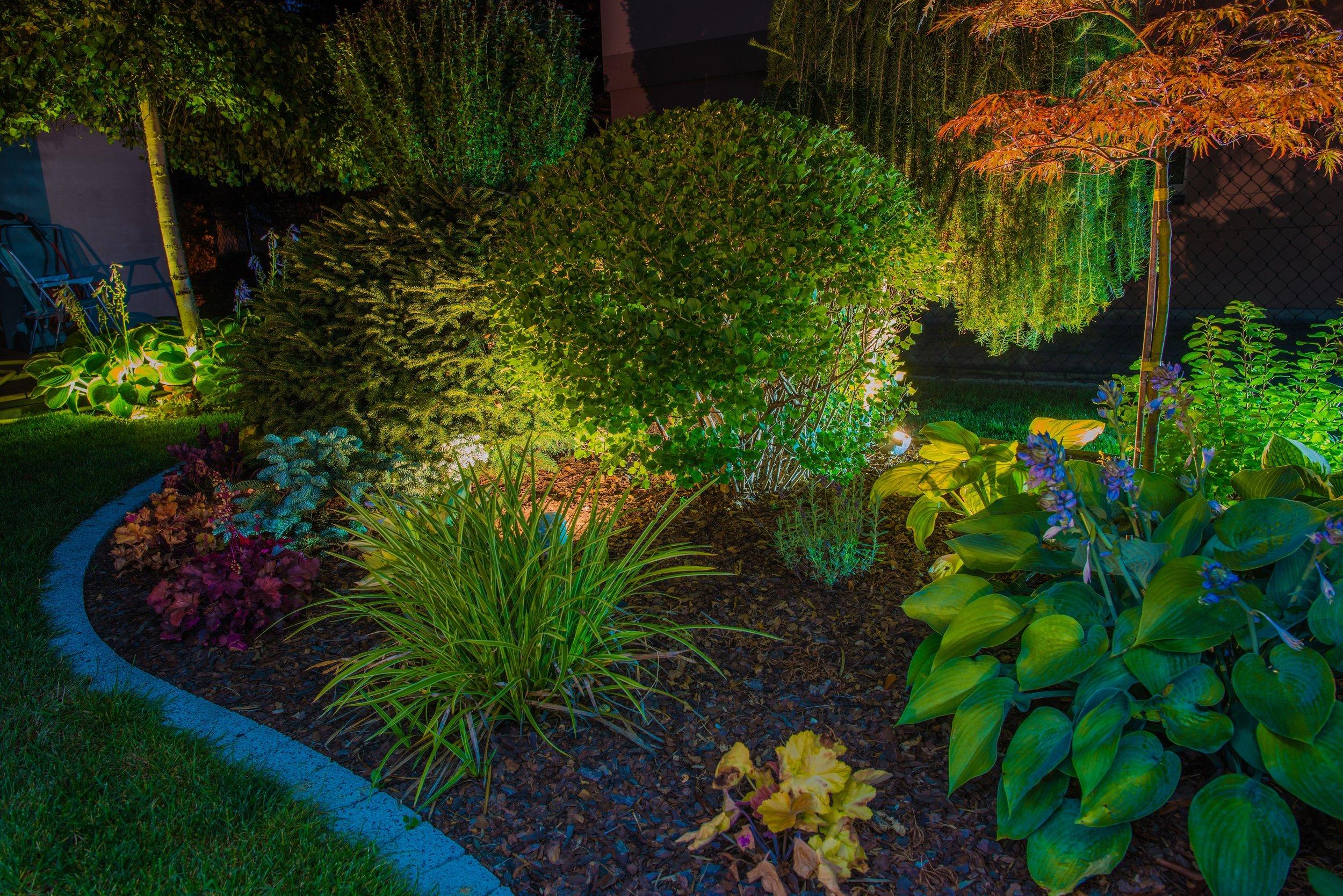 Landscape Design -
