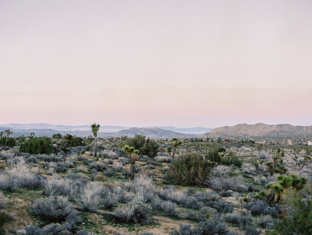California wedding photographer | Joshua Tree photography