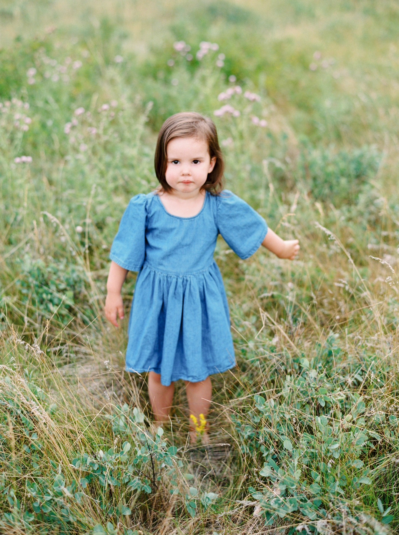 calgary family photographers | mini session family photos summer | family photos outfit inspiration what to wear | justine milton fine art film photography