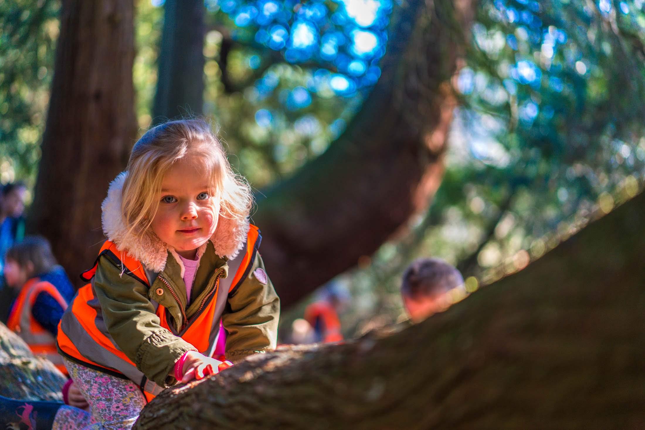 westonbirt-arboretum-2019-02-27--2279-234435-208.jpg