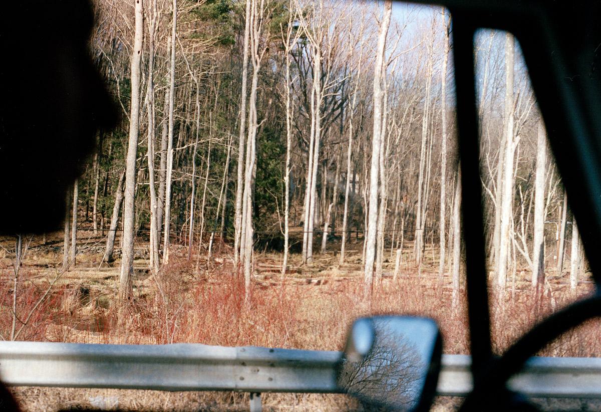 woodstock1.jpg