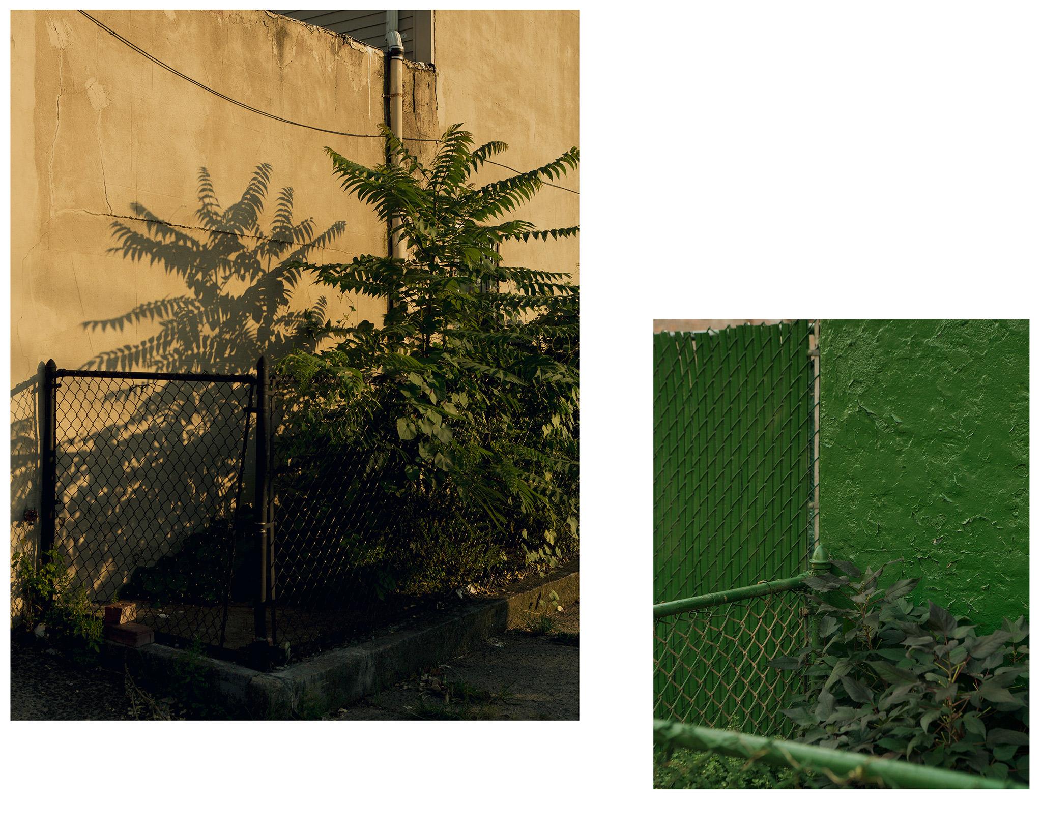 streetscenes.jpg