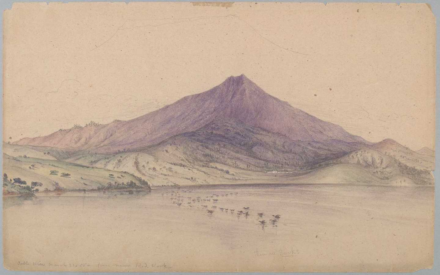 Watercolor painting of Mount Tamalpais, by William McMurtrie, 1855. Source: Wikimedia