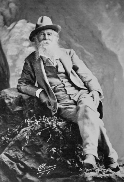 Walt Whitman, looking at home on the range. Courtesy photograph