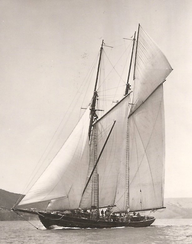 The Zaca in all her glory.  Photo courtesy of Sausalito Historical Society
