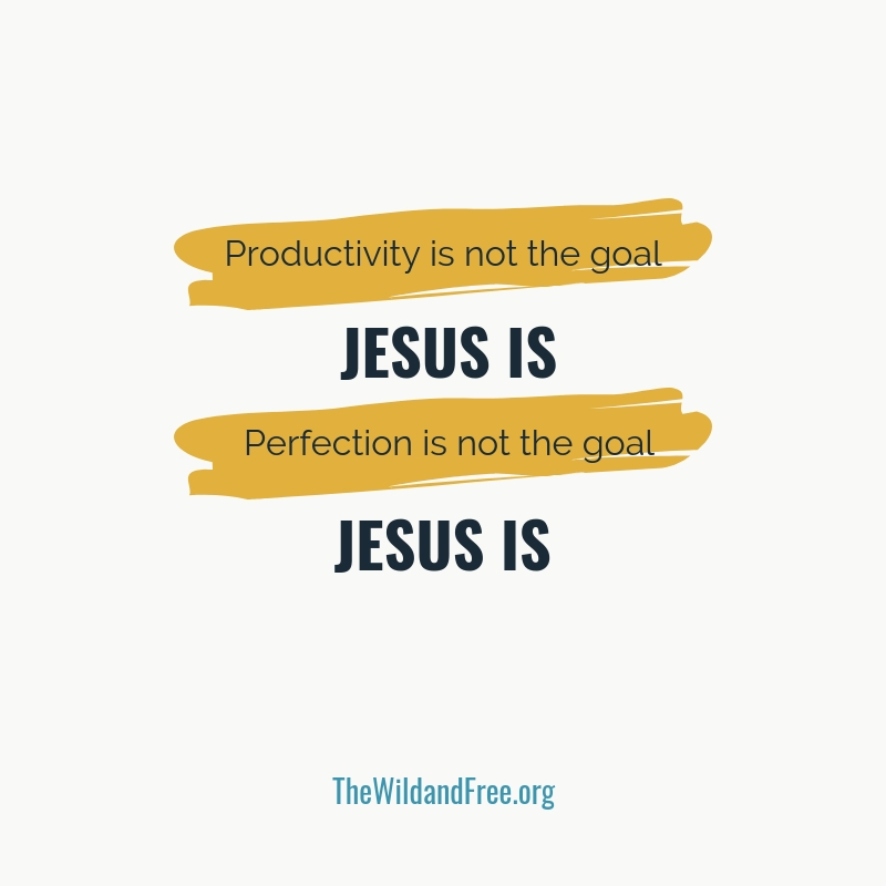 How to avoid discouragement when you have a crappy day.. Graphic inspirational quote reminding  you that perfection is not the goal, Jesus is. Productivity is not the goal, Jesus is.