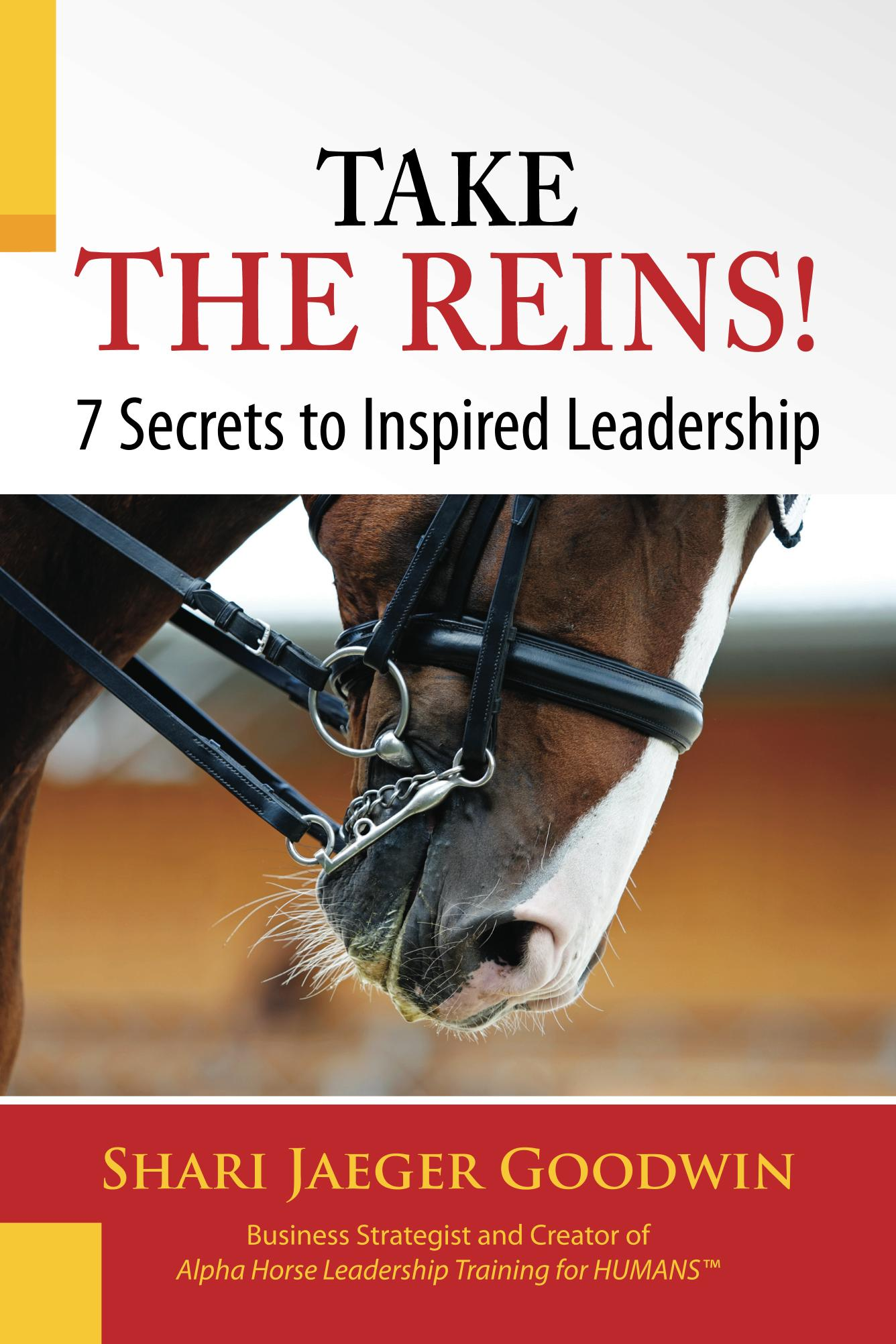 TAKE_THE_REINS_!_7_S_Cover_for_Kindle.jpg