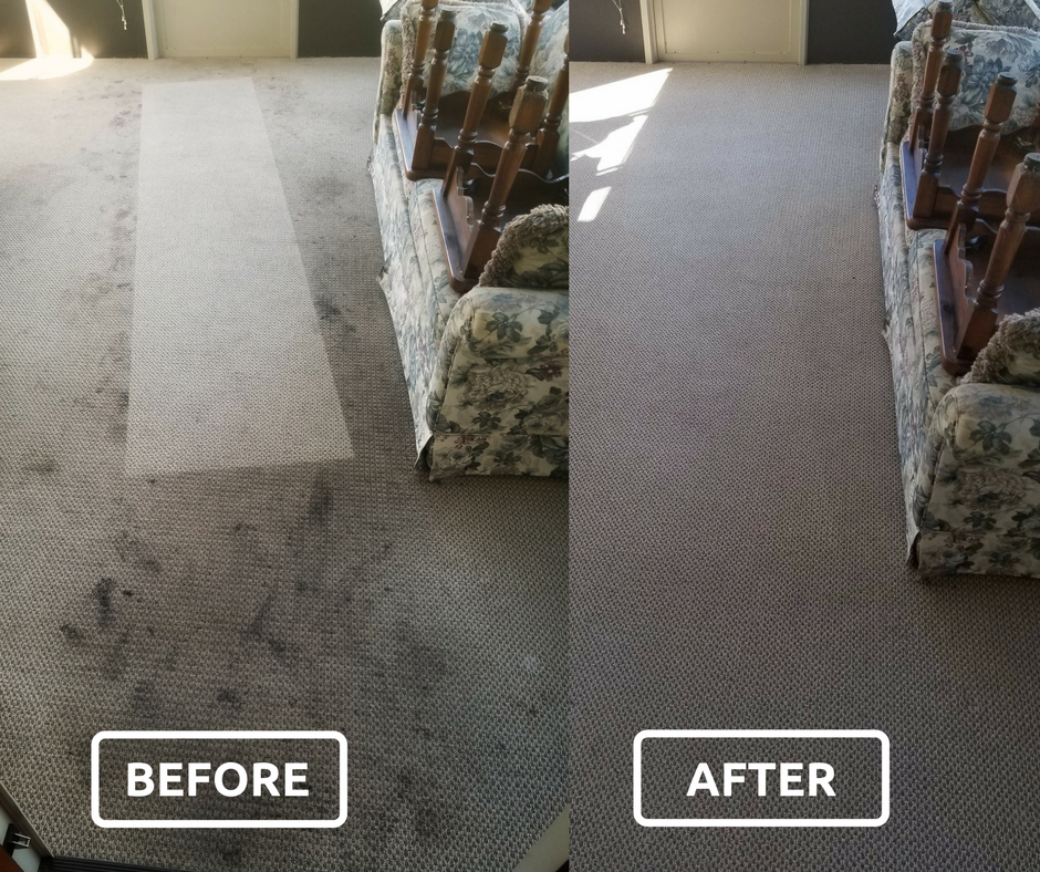 affordable cleaners before and after.png