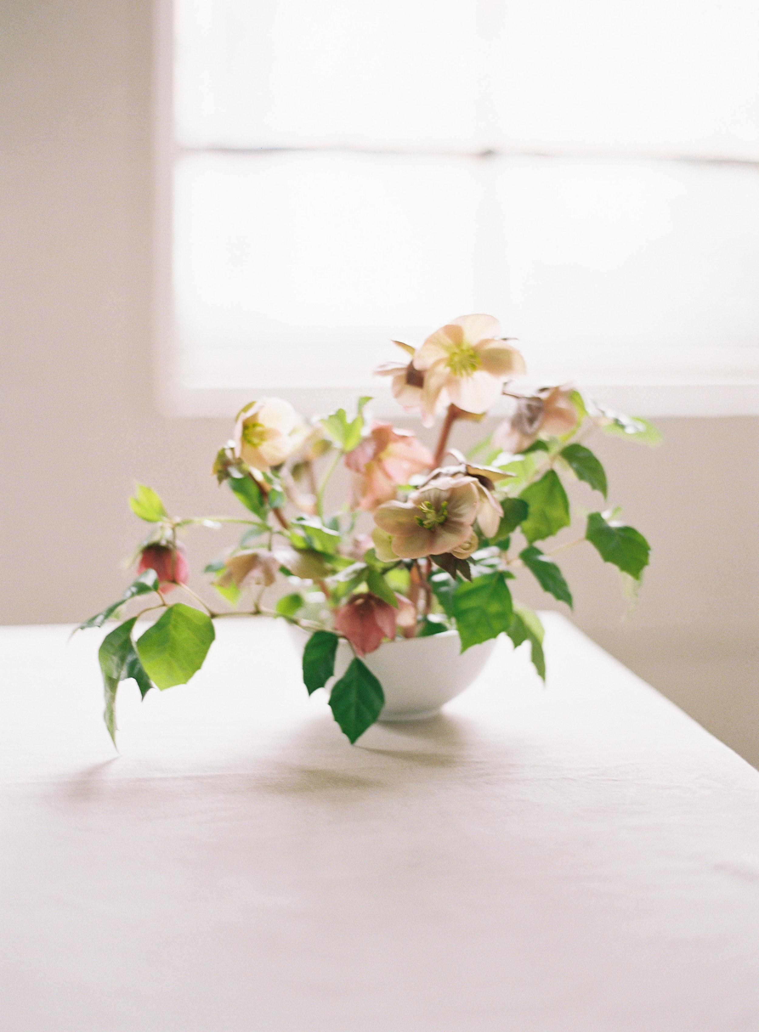 All Floral Images-0089.jpg