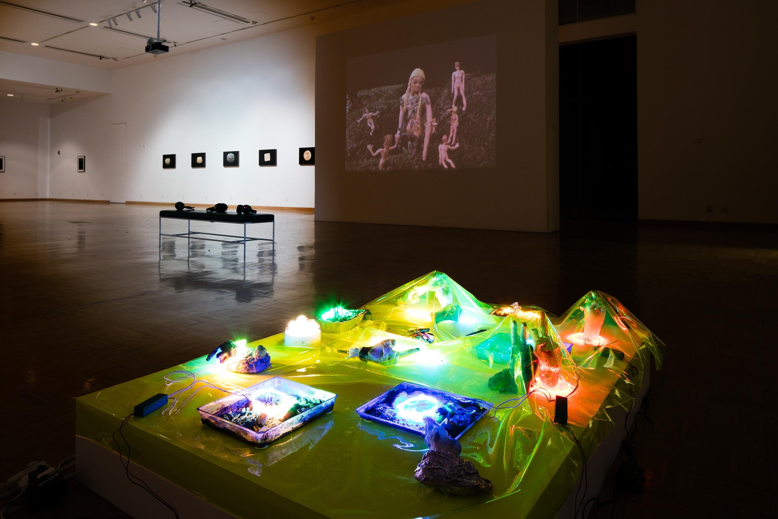 installation view, Luckman gallery,2016