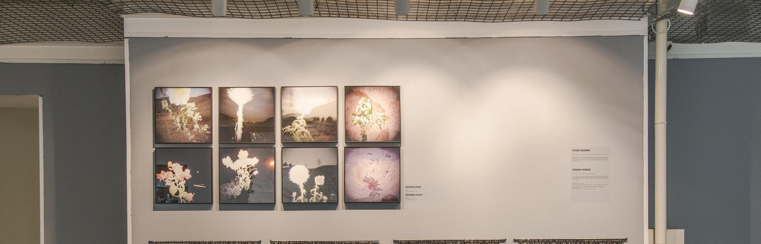 Installation view Triumph gallery, flower, 2016