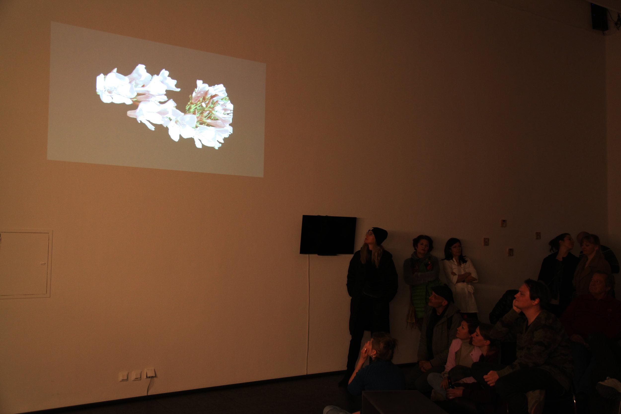 Audiovisual by Ashkan Sepahvand,The oleander the same  Photo: Jacopo Miliani