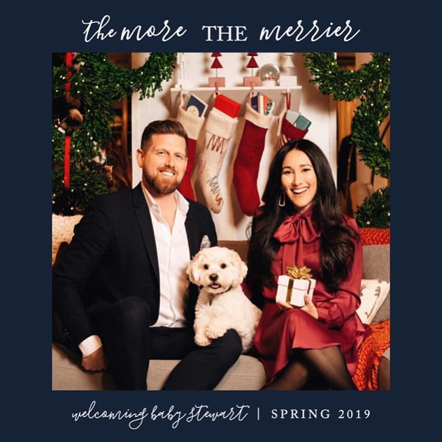 We have an extra special package under our Christmas tree this year. Welcoming Baby Stewart, Spring 2019🎁 . . . #christmas #christmaspresent #babyannouncement #babystewart #family #brianglea #croutonstewart #lovemyfam #mytinytribe #newyorkcity