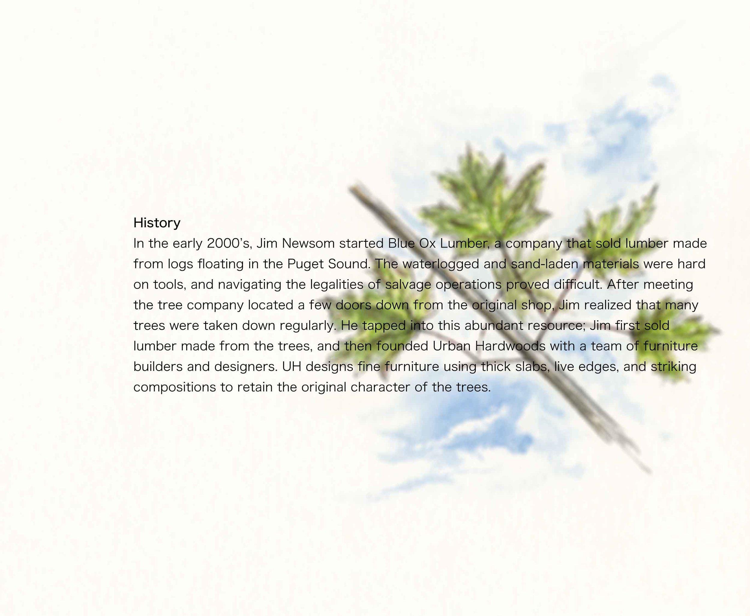 UHBookPage2.jpg