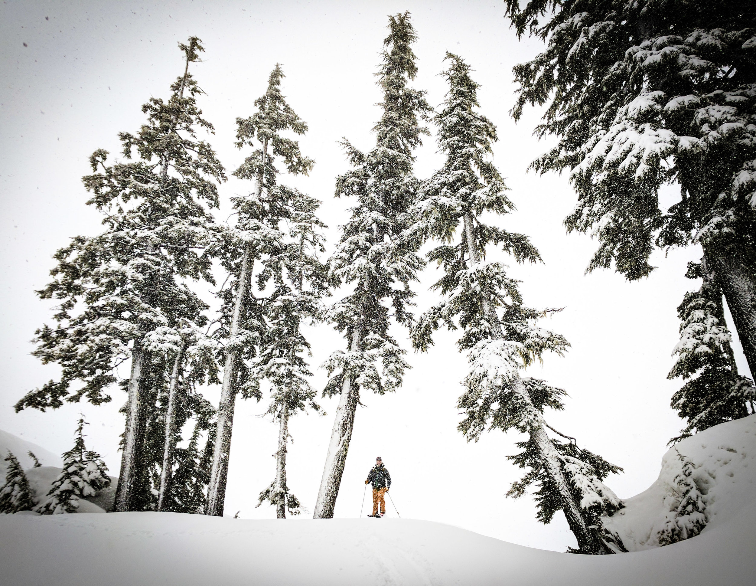 Splitboarding is the answer. The journey is the reward. (pic courtesy of Zach Birmingham)