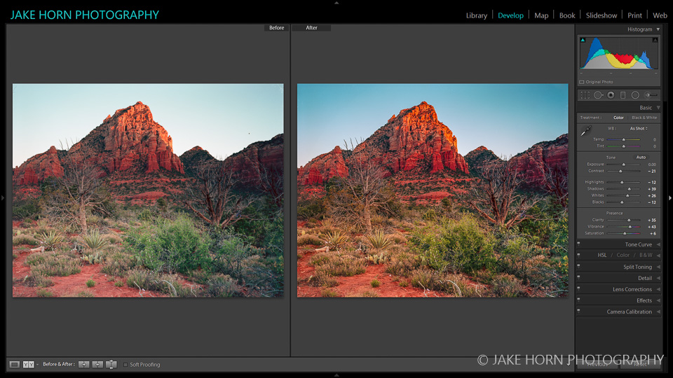 Before & After: Raw Scan from Epson flatbed and preset applied