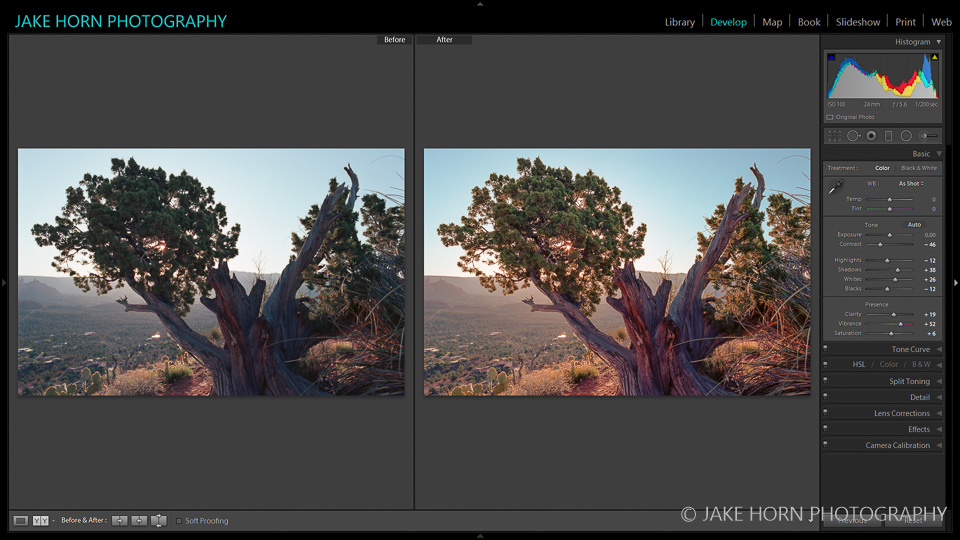 Before & After: Raw Scan and Dawn Rising Preset