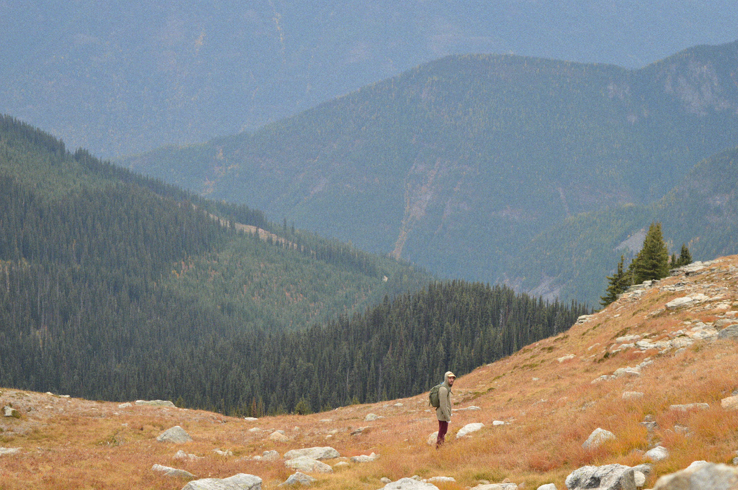 Hiking in Valhalla Provincial Park