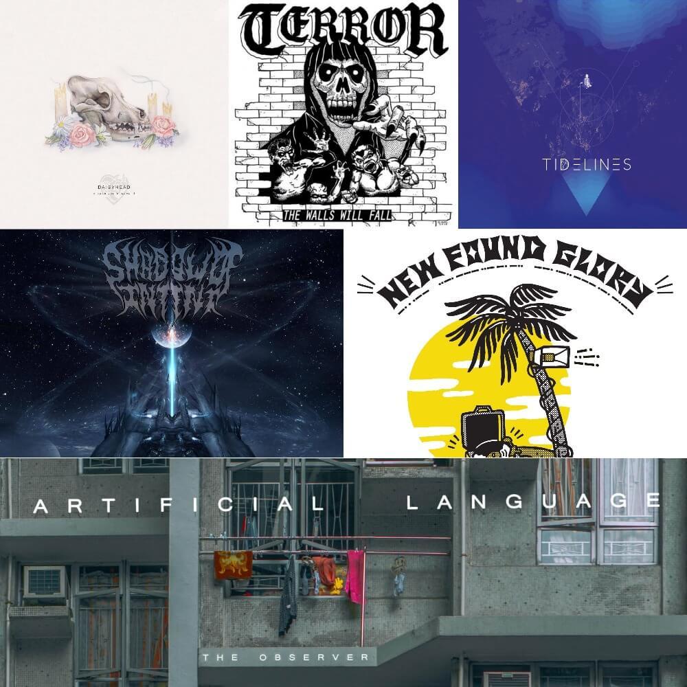 Albums 3  5-02-17.jpg