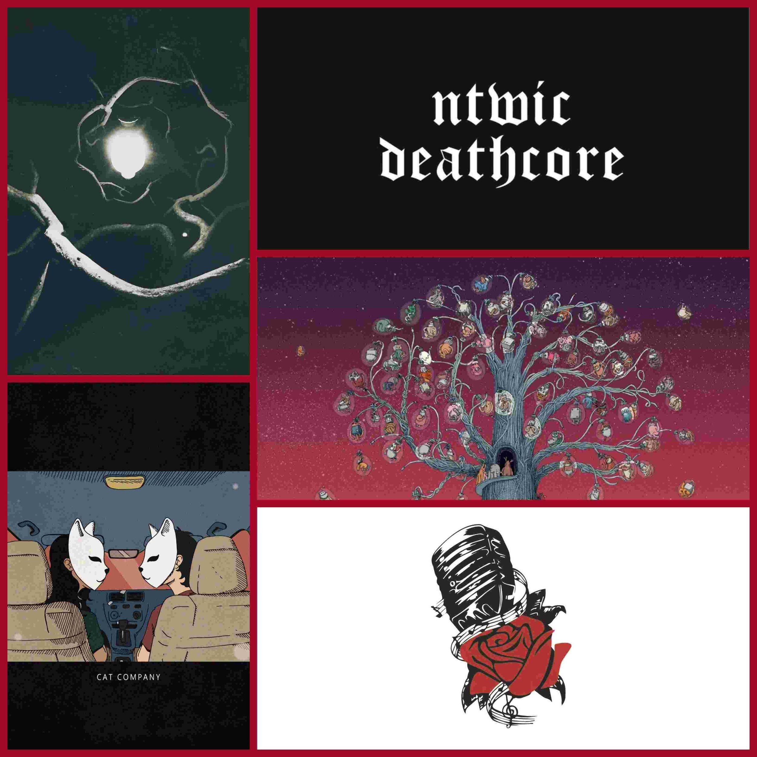 20180614 Albums.jpg