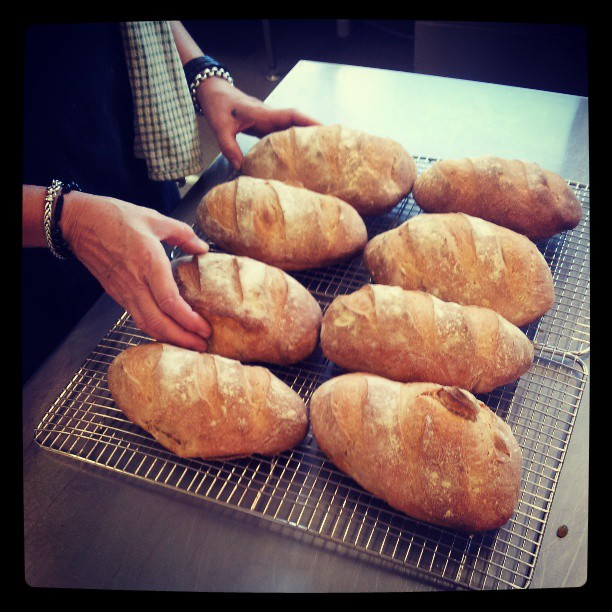 Eight of 32 loaves for the Tarremah Winter Feast #pantreeproducecatering