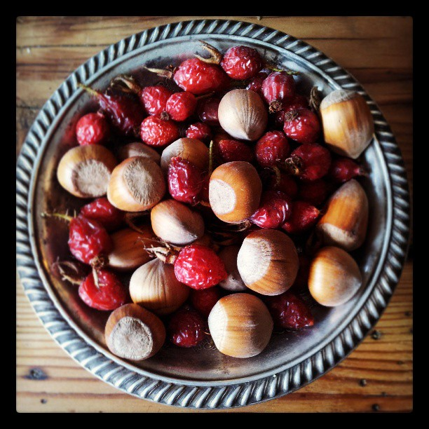 Hazelnuts and rosehips