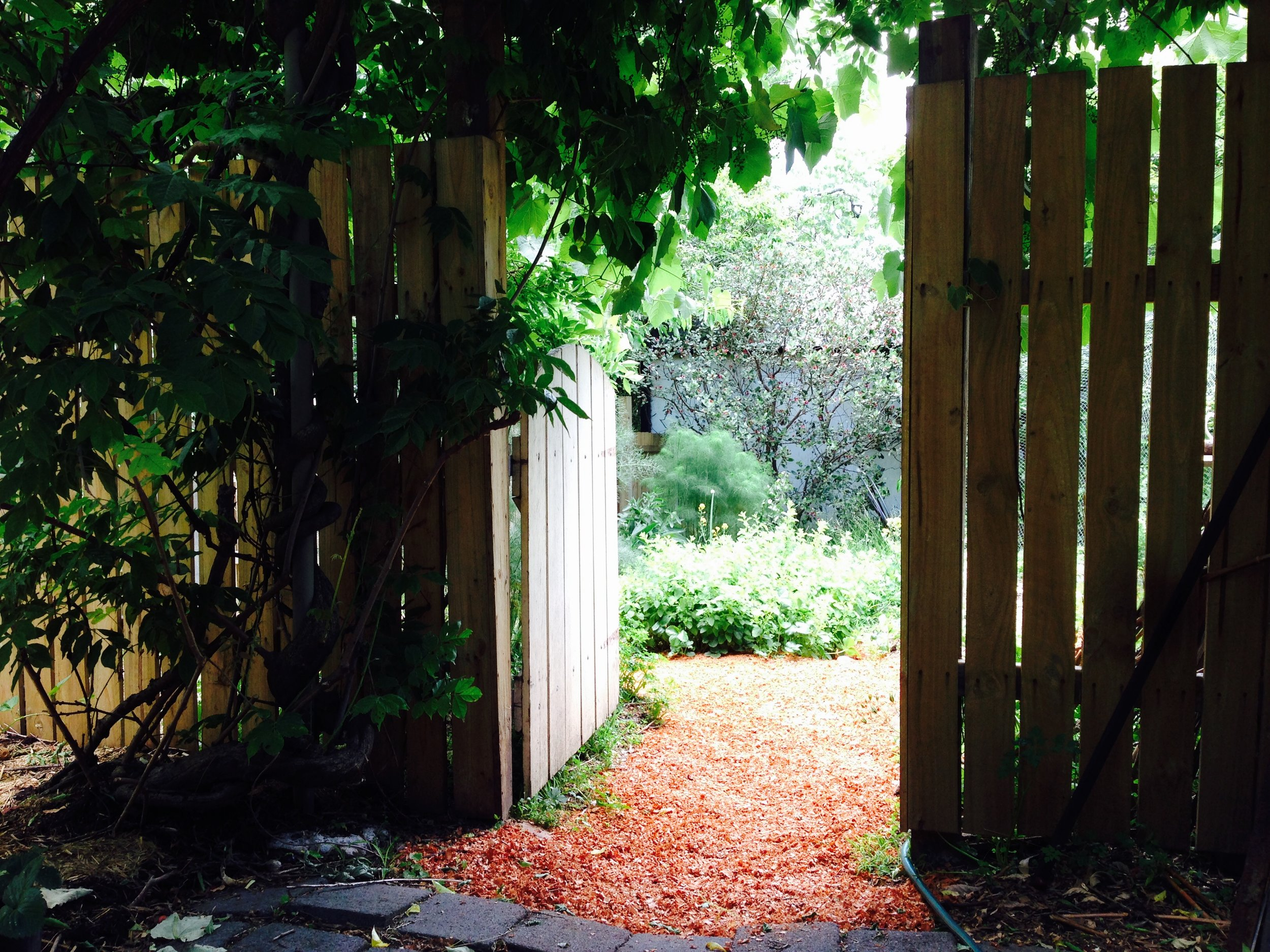 This is the gate from the orchard into the vegetable garden, where you can get a glimpse of some lemon balm, fennel and feijoa. Again, wood shavings from a local cabinet maker protect the paths, and we're hoping to inoculate them with mushies eventually!