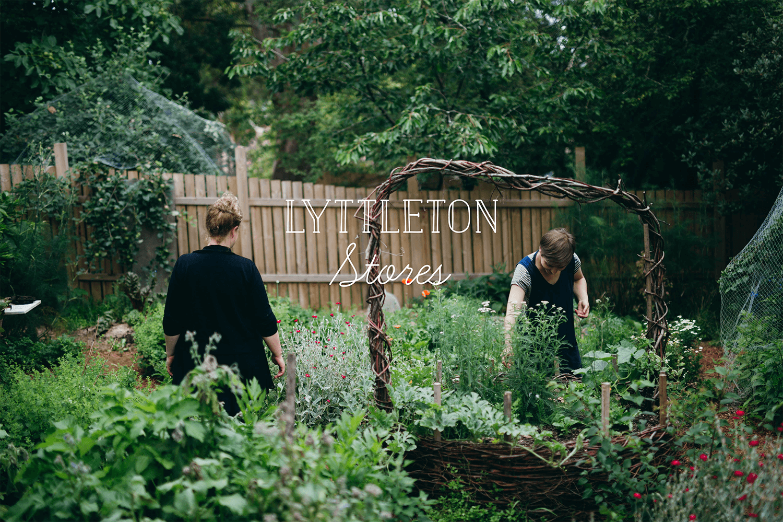 Lyttleton-Stores-Community-Garden-6.png