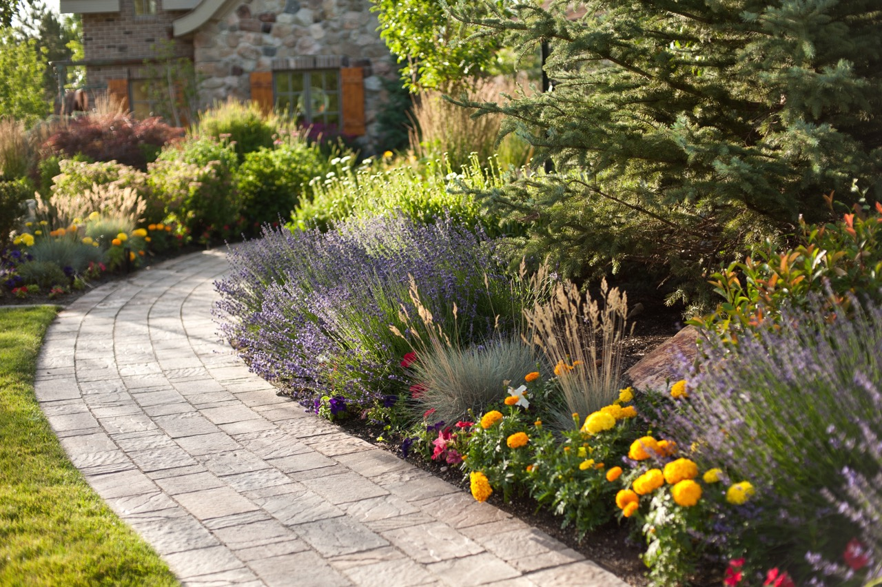 Platinum Landscape & Pools plant and tree care.