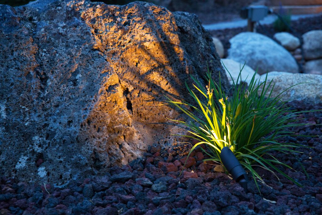 Garden lighting spotlight by Platinum Landscape & Pools.