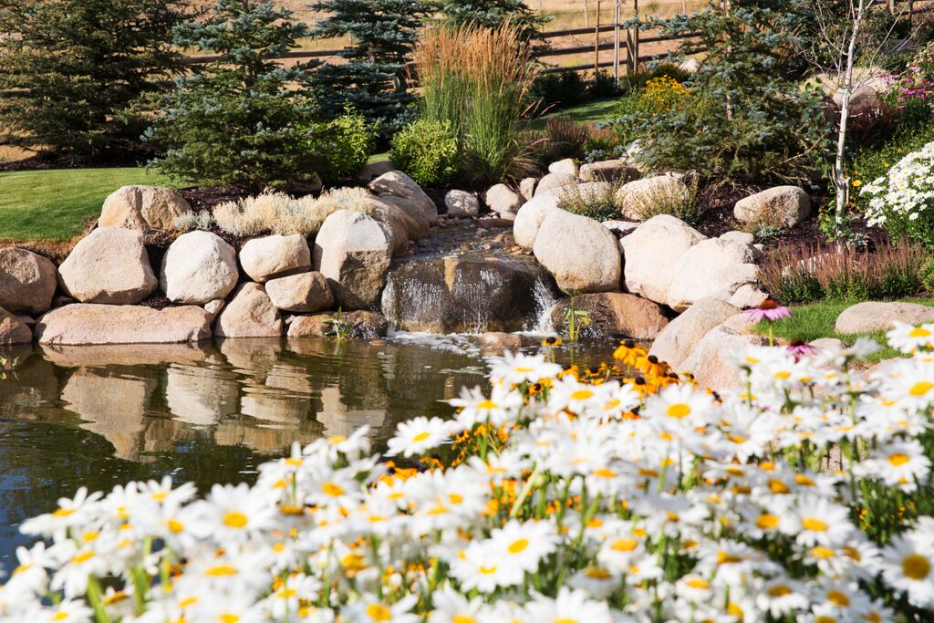 Flowering beds and water feature