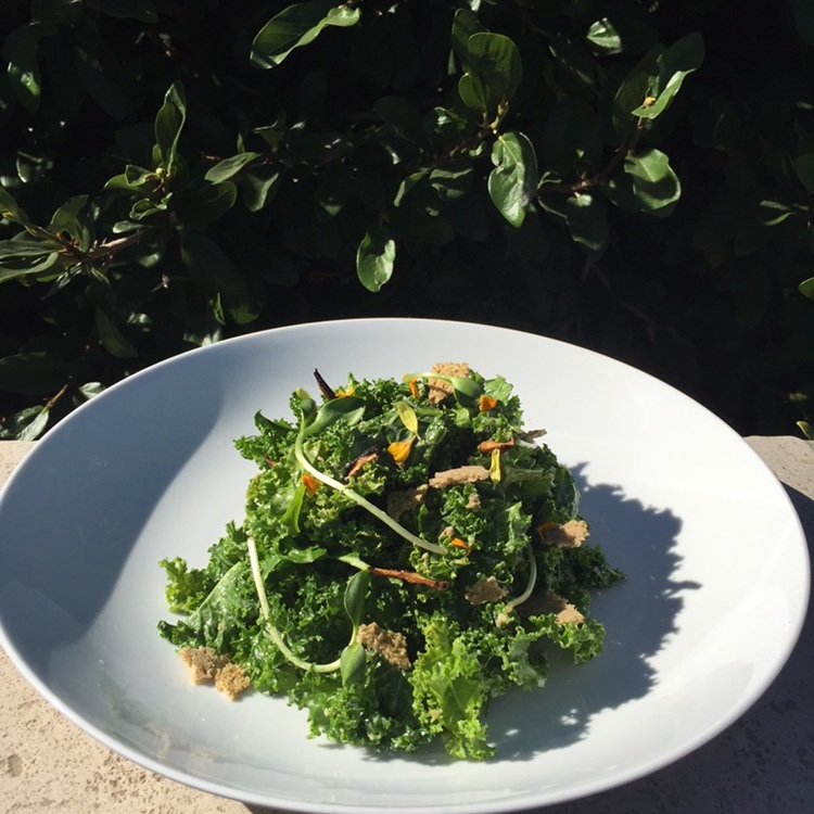 Kale Cesar Salad with Sunflower Dressing & Shiitake Anchovies.