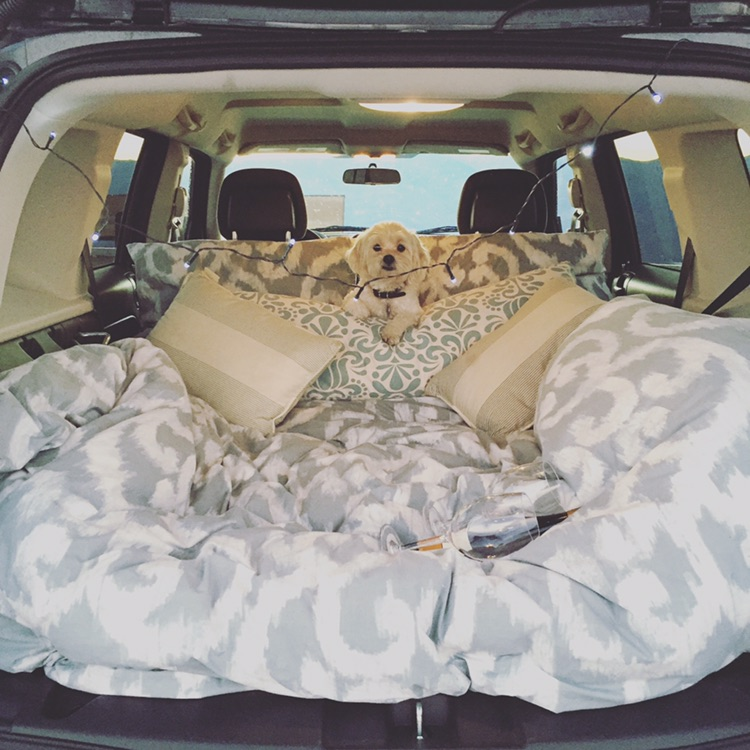 Ready for our road trip! Mattress, snacks, Coco and all!