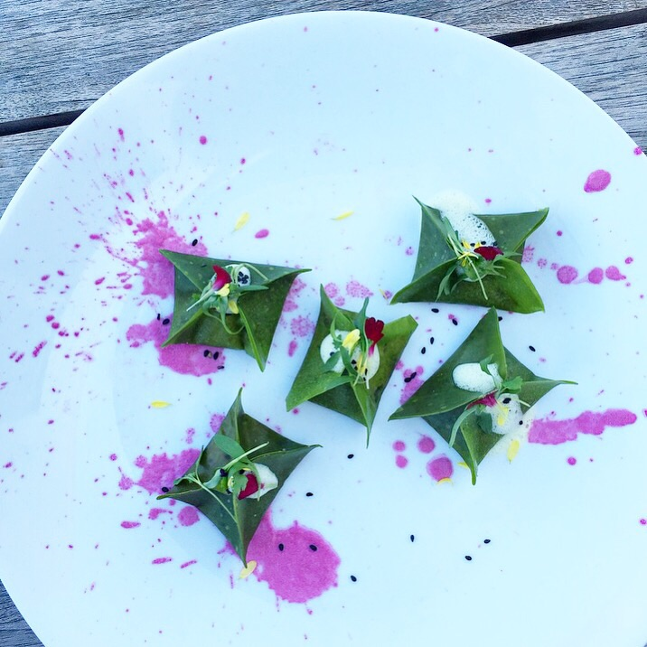 Kimchi Dumplings with Ginger Sesame Foam and Purple Cabbage Puree