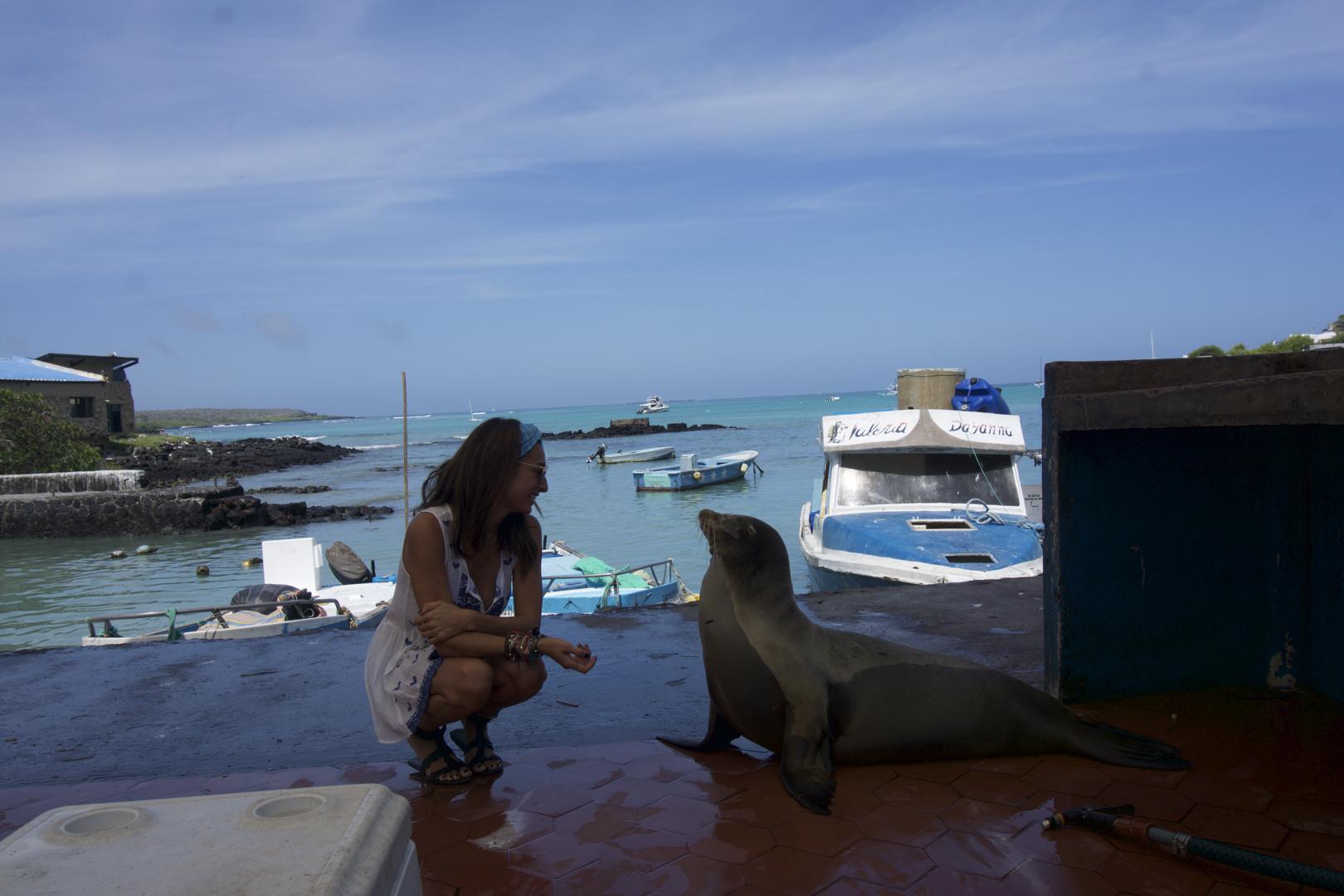 Puerto Ayora