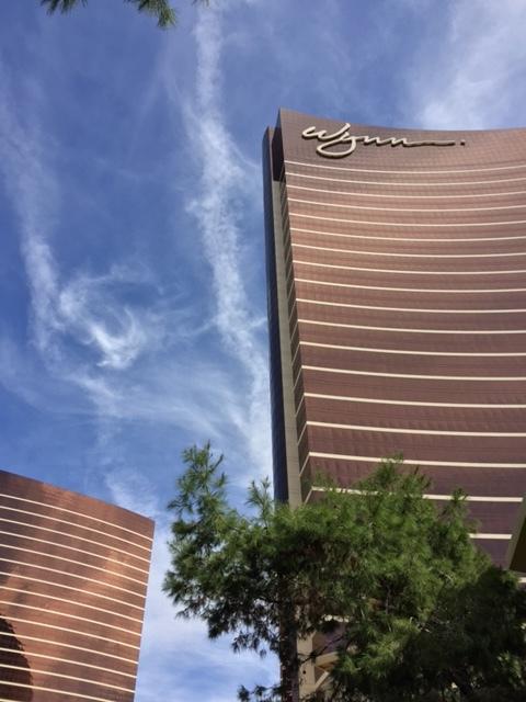 Wynn Hotel, Vegas, Ira and Lucy Wedding Planner