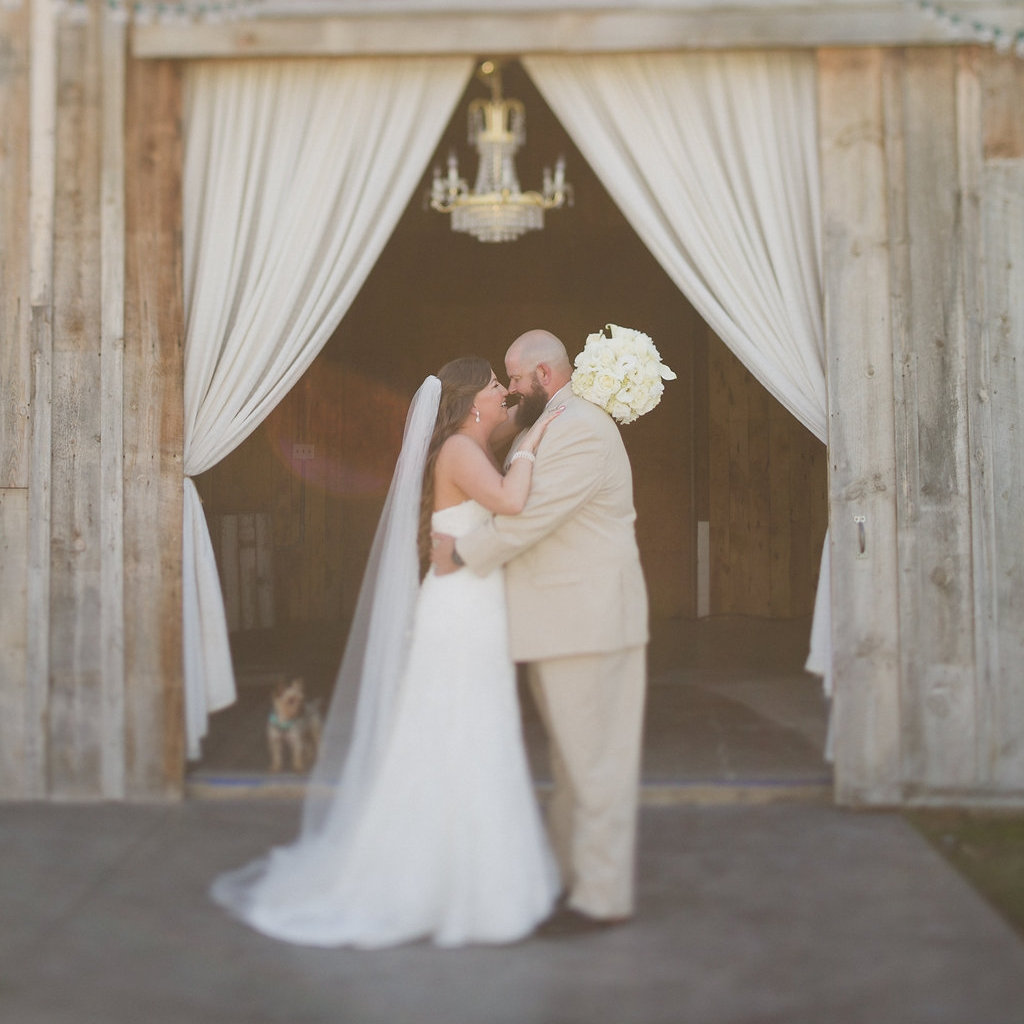 Kylie and Punky, Ampersand Studios Photography, Ira and Lucy Design