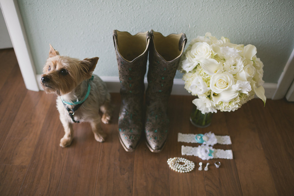 Kylie and Punky Country Wedding, Ampersand Studios, Ira and Lucy