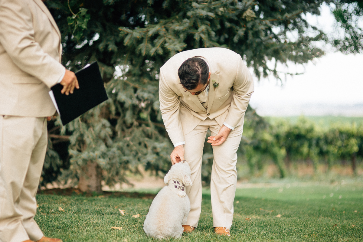 Kali and Matt, Winery Wedding, Ongoing World Photography
