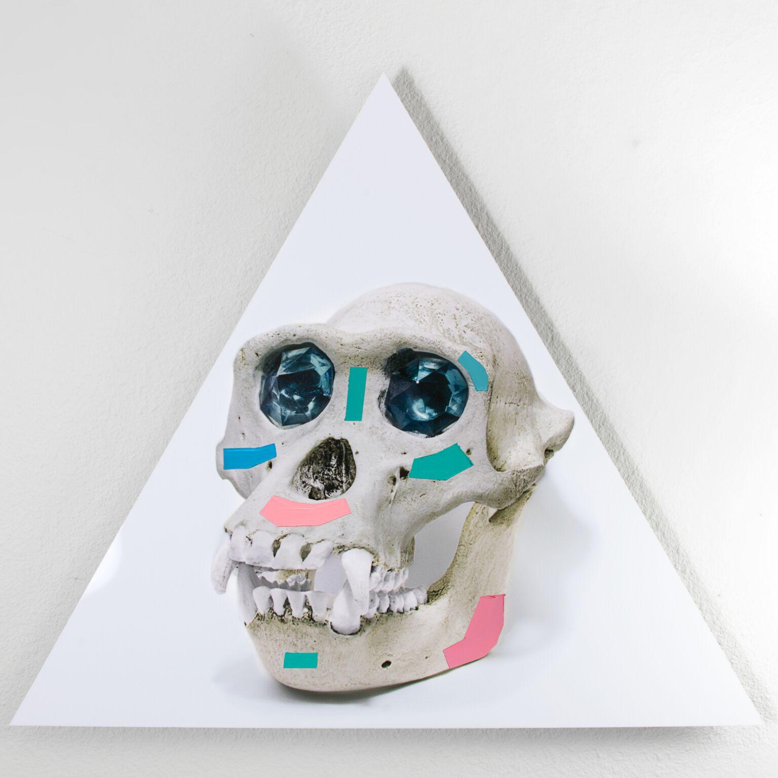 3_Ancient_God_Always_Dream_of_Forever_Chimp_Replica_Skull_Victor_Koroma_preview.jpg