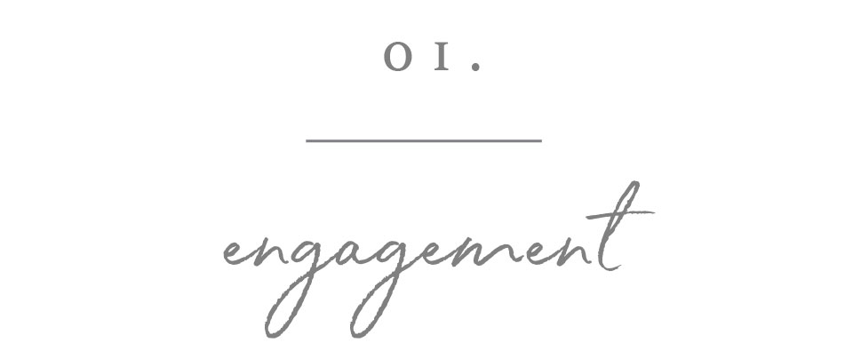 click here for info on engagement sessions