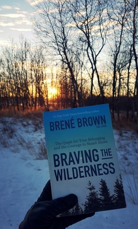 Braving the Wilderness (450x800).jpg