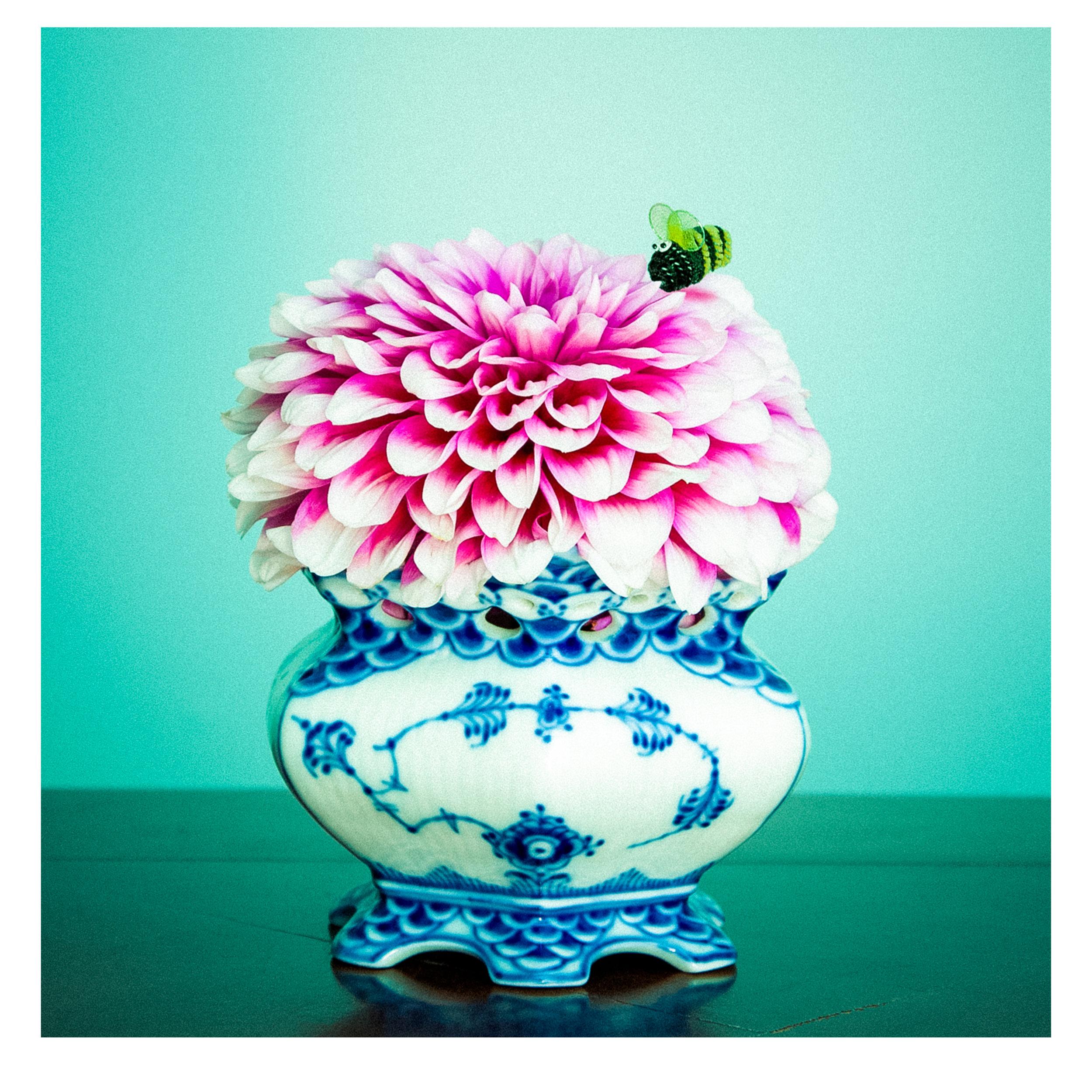 dahlia blue vase.jpg
