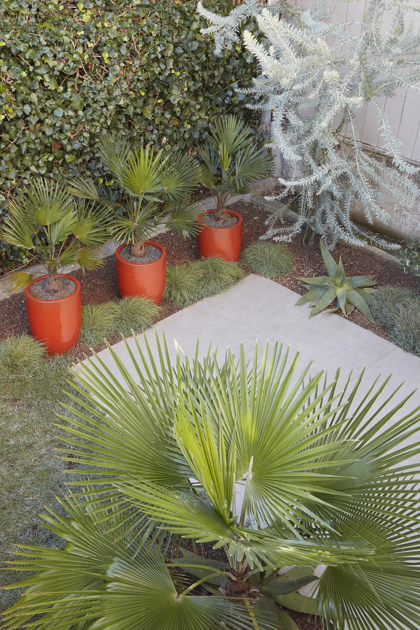 Garden Design by Jason Dewees