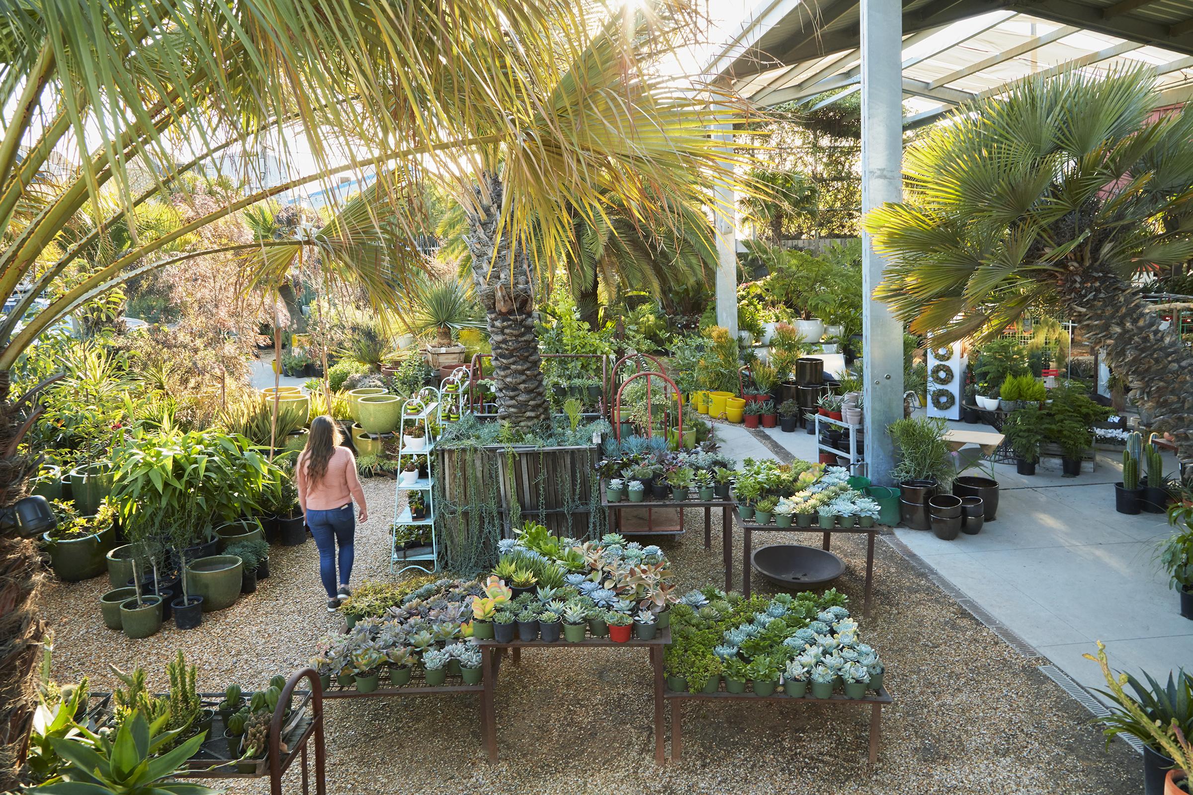 Flora Grubb Gardens in San Francisco -Plants for the Home and Garden.jpg